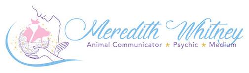 Meredith Whitney